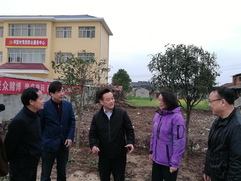 省委党史研究室开展义务植树活动